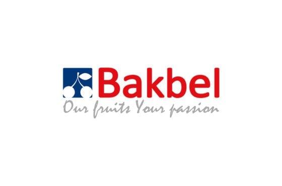 Bakbel